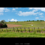 alsace_s_05