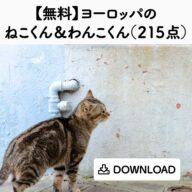 animals_s_01