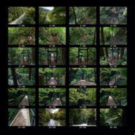 woods_s_02