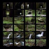woods_s_07